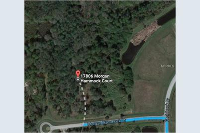 Parrish Florida Map.17806 Morgan Hammock Ct Parrish Fl 34219 Mls A4163236 Coldwell