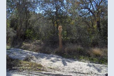 32834  Watson Drive Dr - Photo 1