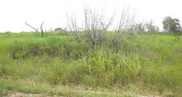 204  Sleepy Meadow - Photo 4