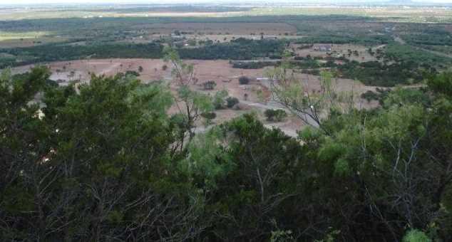 166  Cedar Creek Ranch Trail - Photo 2