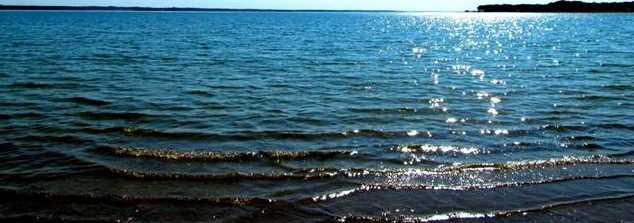 L 309  The Shores Drive - Photo 2