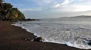 1  Drake Bay Treasure - Photo 1