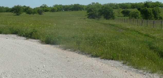 4580  Bear Creek Road - Photo 8