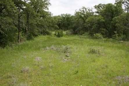 1191  Prickly Pear Trail - Photo 2