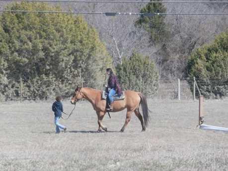 17000  Hcr 1231 / Star Ranch Drive - Photo 8