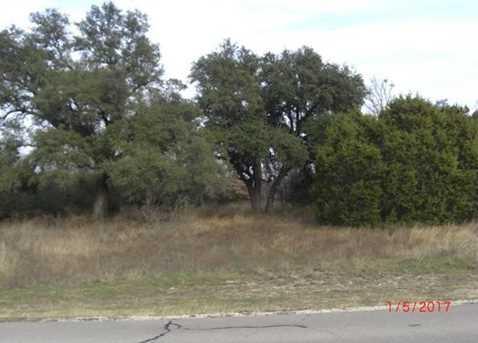1626  White Bluff Drive - Photo 4
