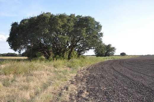 Xxxx  County Road 193 - Photo 6