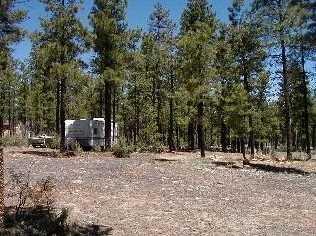 Parcel 106 Ponderosa Trail - Photo 2