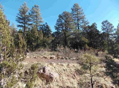 2845 Mustang Trail - Photo 1