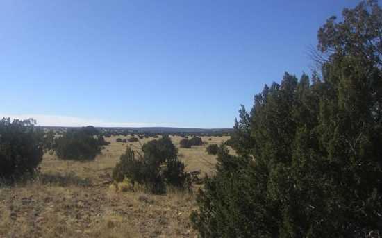 Lot 390 Chevelon Canyon Ranch - Photo 6