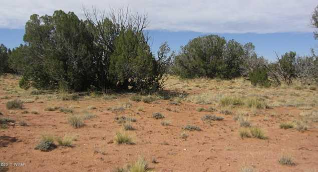 Lot 390 Chevelon Canyon Ranch - Photo 14