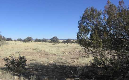 Lot 390 Chevelon Canyon Ranch - Photo 2