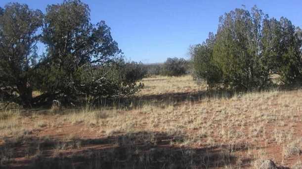 Lot 390 Chevelon Canyon Ranch - Photo 4