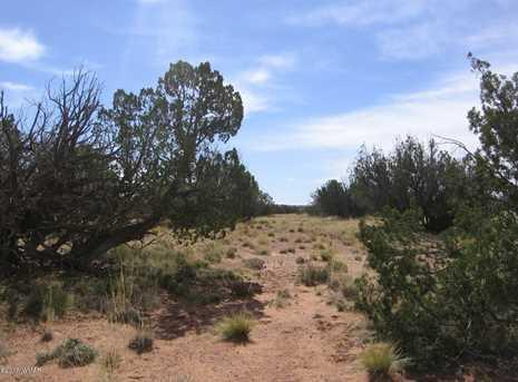 Lot 390 Chevelon Canyon Ranch - Photo 12
