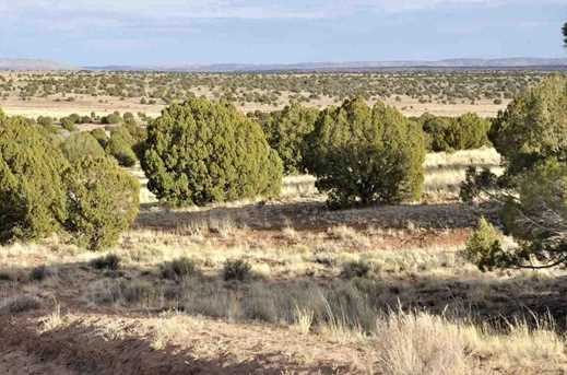 Lot 113 River Meadows Ranch - Photo 16