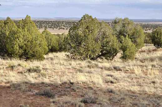 Lot 113 River Meadows Ranch - Photo 8
