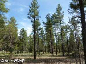 1351 W Walnut Creek Trail - Photo 1
