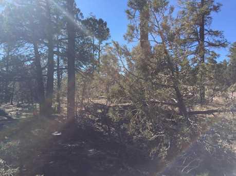 1525 S Twin Peak Trail - Photo 4