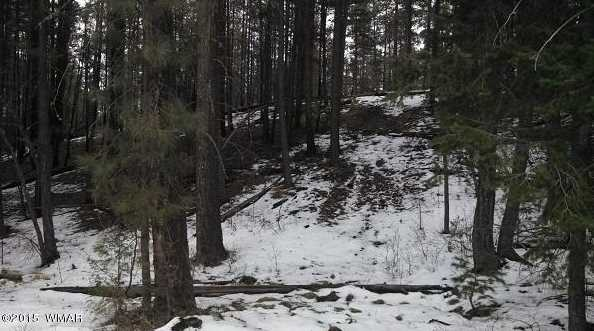 19 Co Rd 2072 - Photo 22