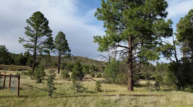 5194 Pinedale Wash Road - Photo 4