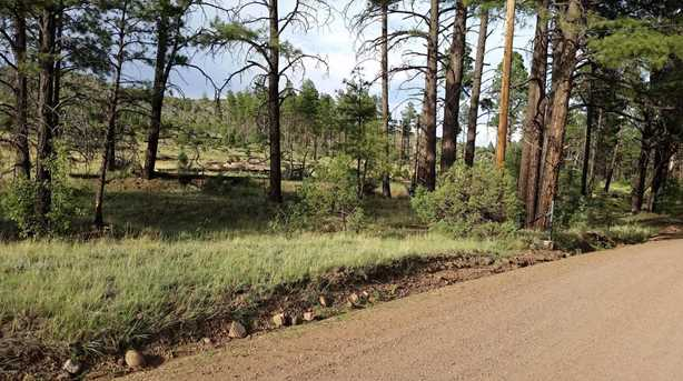 5194 Pinedale Wash Rd - Photo 10