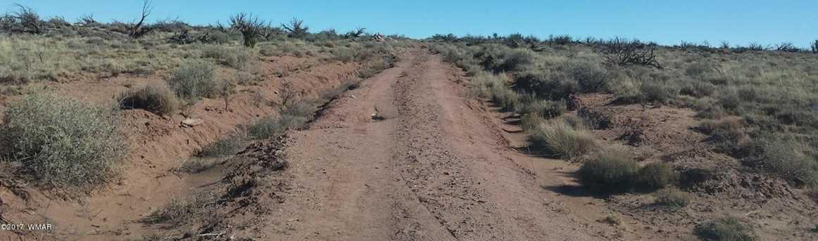 7901 Rockin R Ranch Trail - Photo 8