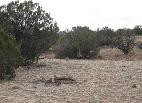 Lot 255 Woodland Valley Ranch - Photo 2