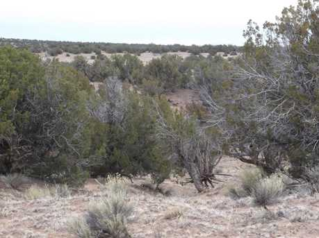 Lot 255 Woodland Valley Ranch - Photo 4