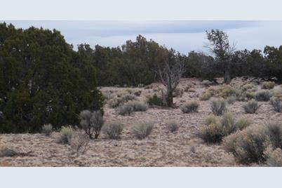 Lot 255 Woodland Valley Ranch - Photo 1