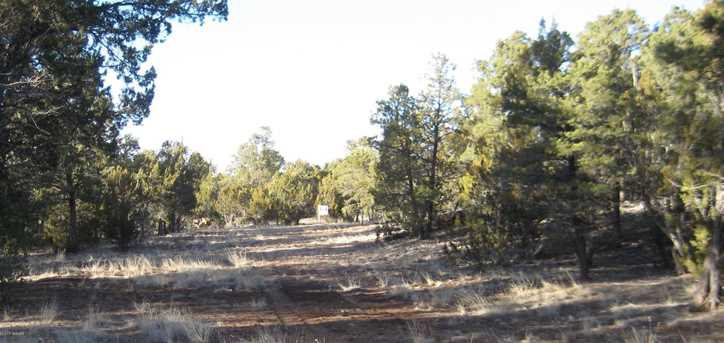 3242 Jeep Trail - Photo 4