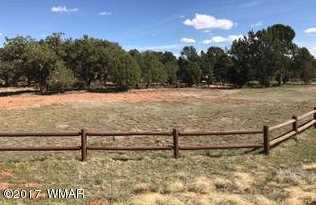 957 Cheney Ranch Loop - Photo 6