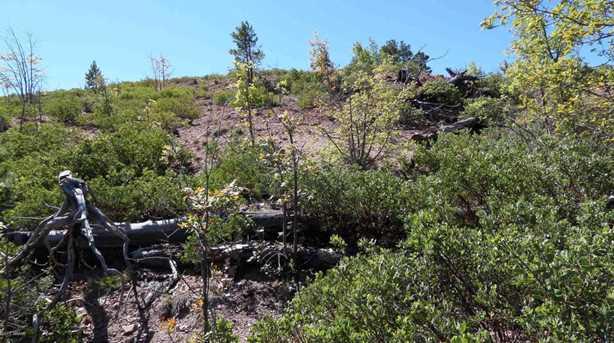 839 Wilderness Trail - Photo 6