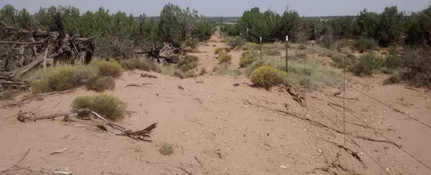 4248 Dusty Road - Photo 18
