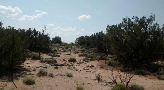4248 Dusty Road - Photo 8
