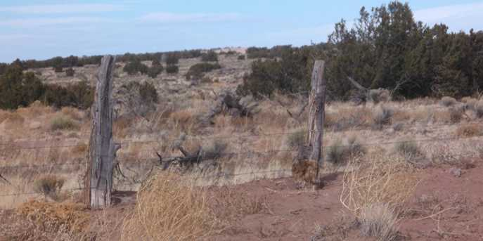Lot 414 Woodland Valley Ranch, Unit 4 #4 - Photo 2
