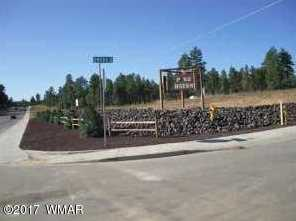 Lot 24 S Mountain Pines Avenue - Photo 1