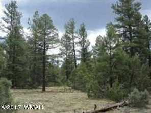 Lot 24 S Mountain Pines Avenue - Photo 4