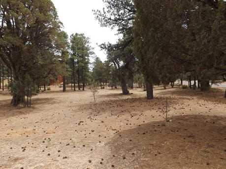 2201 Forest Park Dr - Photo 2