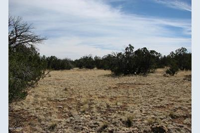 Lot 362 Chevelon Canyon Ranch #3 - Photo 1