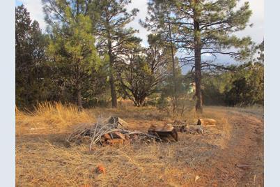 2177 Gingerbread Trail - Photo 1