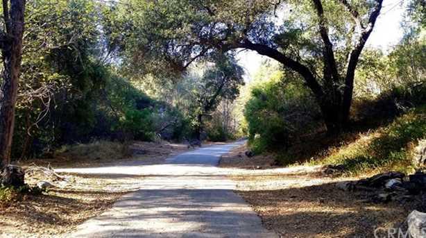 0 Palmer Canyon Road - Photo 4