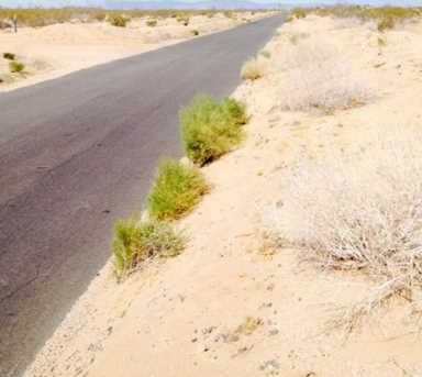 0 Giant Rock Road - Photo 4