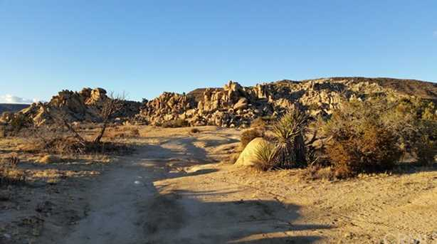 55290 Skyline Ranch Road - Photo 4