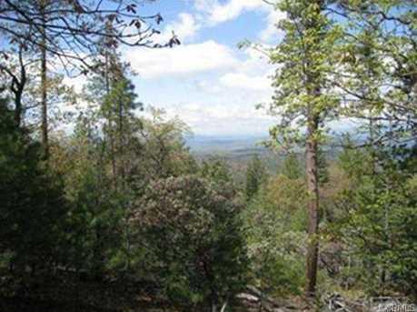 5388 Wilderness View - Photo 4