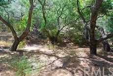 28552 Silverado Canyon Road - Photo 10