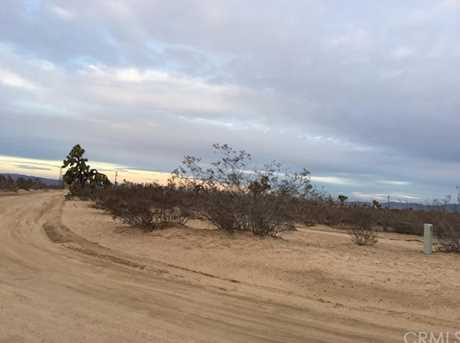 0 Wolf/Nevada - Photo 1