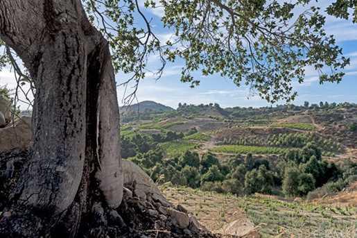 38280 Via Majorca - Photo 68