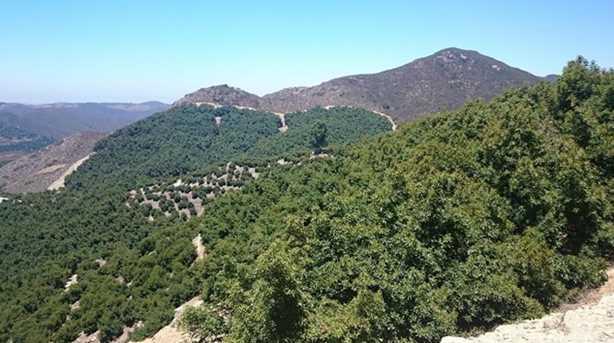 0 Pauma Ridge Rd - Photo 18