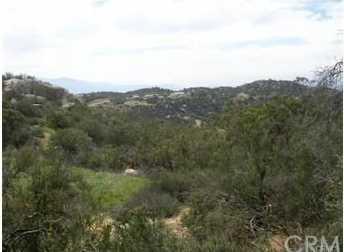 1034 Rolling Hills - Photo 4