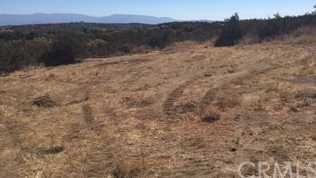44516 Timber Trail - Photo 1